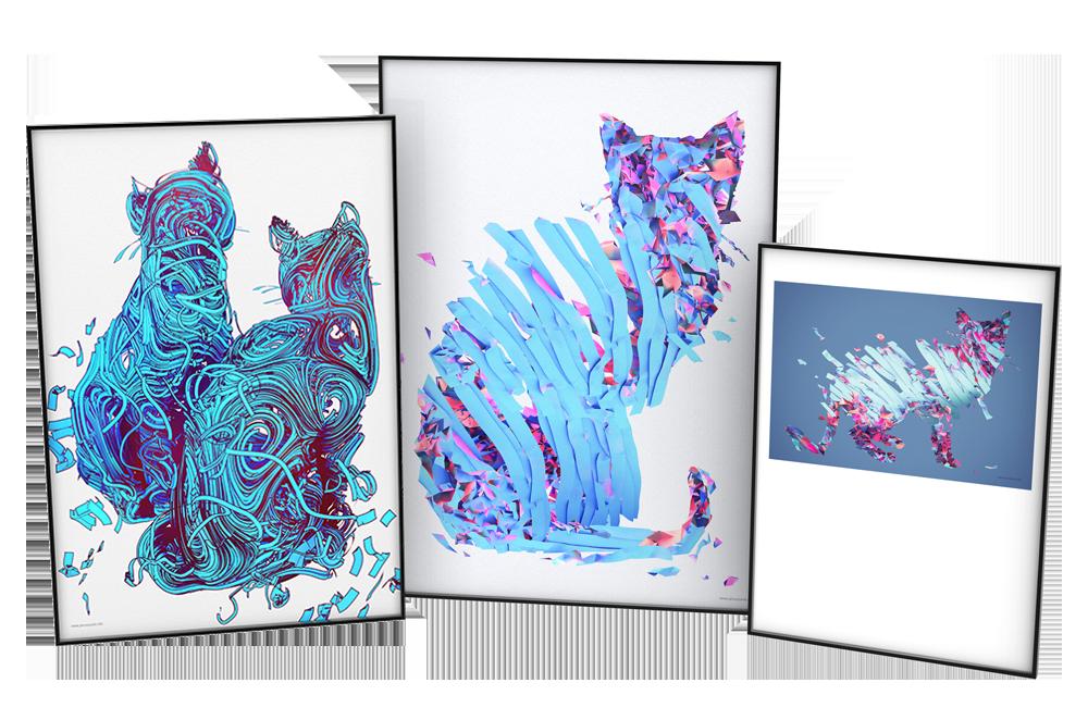 Blue kitty / KOTOGRAFIE